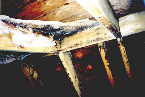 Mold growth on rafters in a high moisture environment